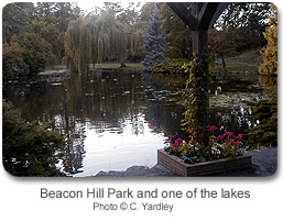Beacon Hill Park and one of the lakes